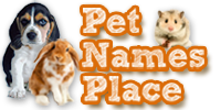 Pet Names Place Logo